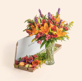 The Zara, £23 single bouquet or £15 on subscription.