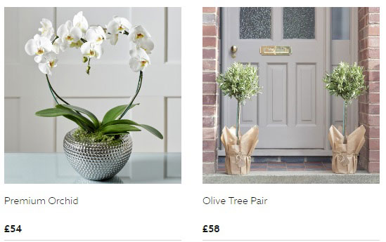 Orchids and trees are also available, with free delivery.
